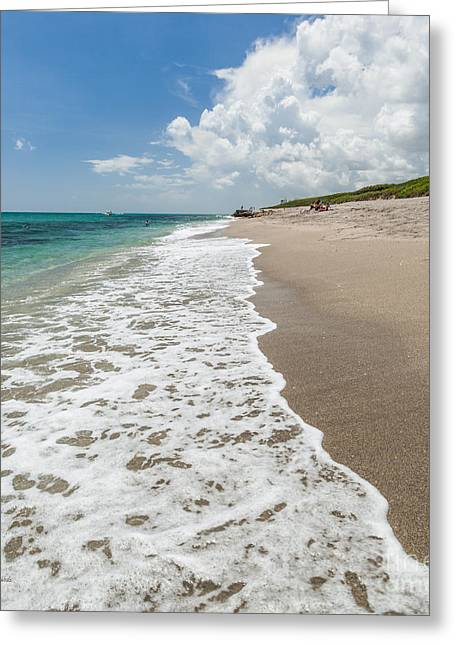 Dazed Greeting Cards - Shore Daze Greeting Card by Michelle Wiarda