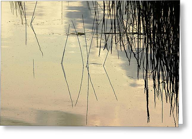 Geometric Image Greeting Cards - Shore Lines Greeting Card by Debbie Oppermann