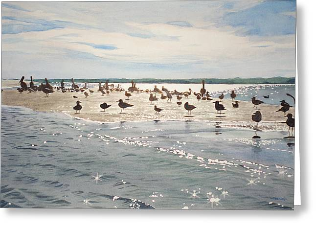 Shorebirds Greeting Cards - Shorebird Convention Greeting Card by Christopher Reid