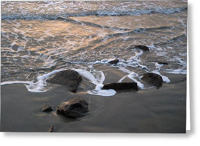 Shoreline Greeting Card by Robert Anschutz