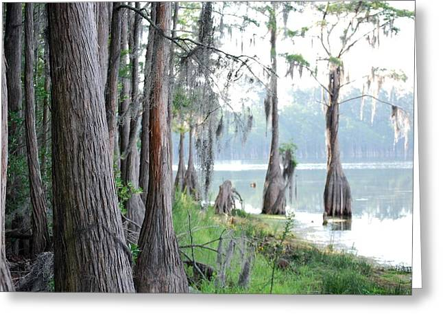 Shores Of Compass Lake Greeting Card by Peter  McIntosh