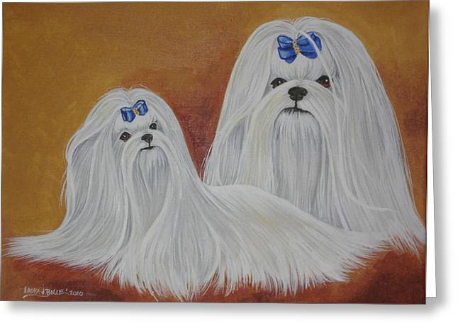 Toy Maltese Paintings Greeting Cards - Show Maltese Greeting Card by Laura Bolle