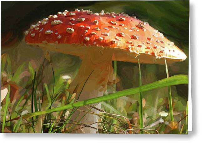 Fungi Paintings Greeting Cards - Shroom Time Greeting Card by Patti Siehien