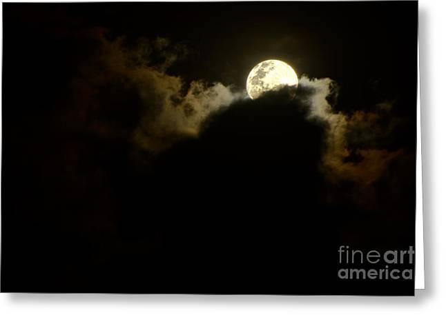 Shy Moon Rising By Kaye Menner Greeting Card by Kaye Menner