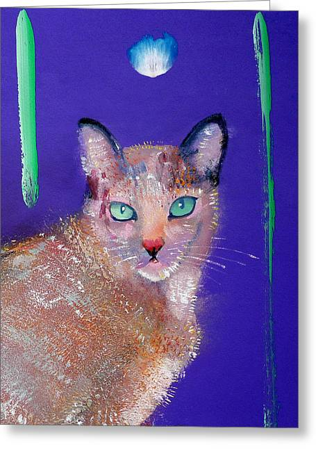 Harmonize Greeting Cards - Siamese Cat Greeting Card by Charles Stuart