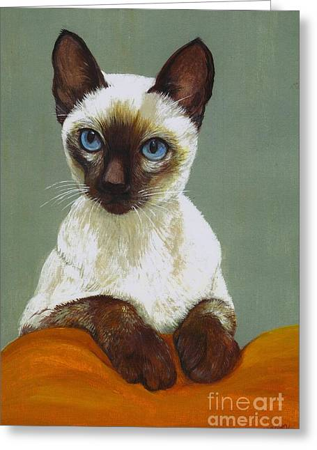 Cats Show Greeting Cards - Siamese Cat Greeting Card by Morgan Fitzsimons