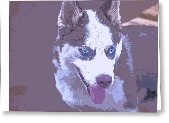 Husky Greeting Cards - Siberian husky Greeting Card by Dennis  Baswell