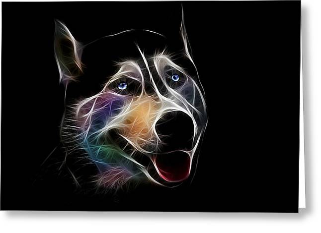 Bright Art Of Dogs Greeting Cards - Siberian husky Greeting Card by Denis Bajan