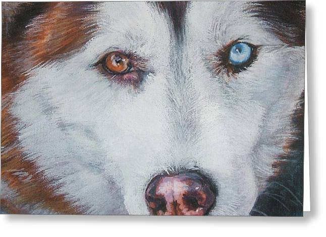 Husky Greeting Cards - Siberian husky red Greeting Card by Lee Ann Shepard