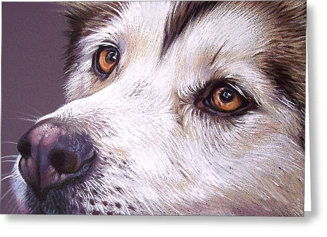 Huskies Drawings Greeting Cards - Siberian Husky Greeting Card by Elena Kolotusha
