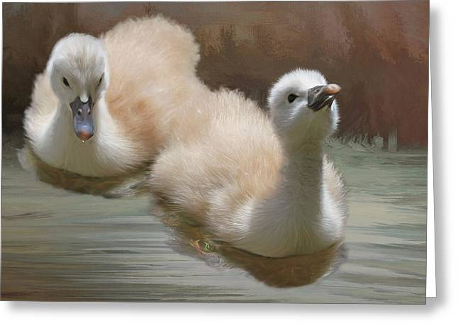 Swans... Greeting Cards - Siblings Greeting Card by Donna Kennedy
