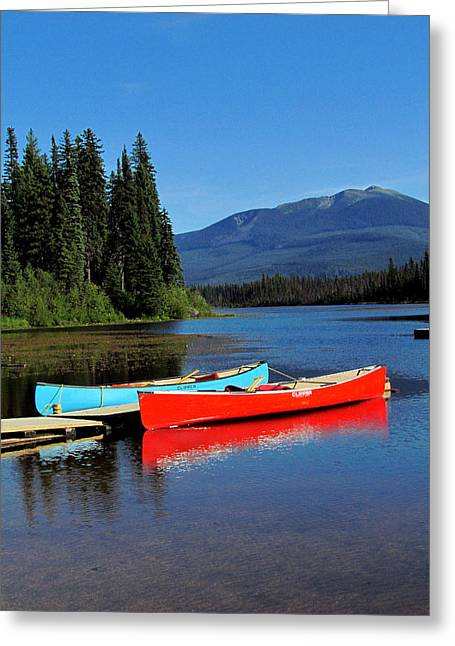 Canoe Greeting Cards - Side by Side Greeting Card by Andrea Arnold