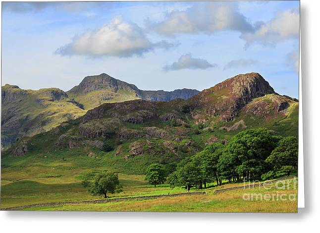 Side Pike And The Langdale Pikes In The Lake District Greeting Card by Louise Heusinkveld