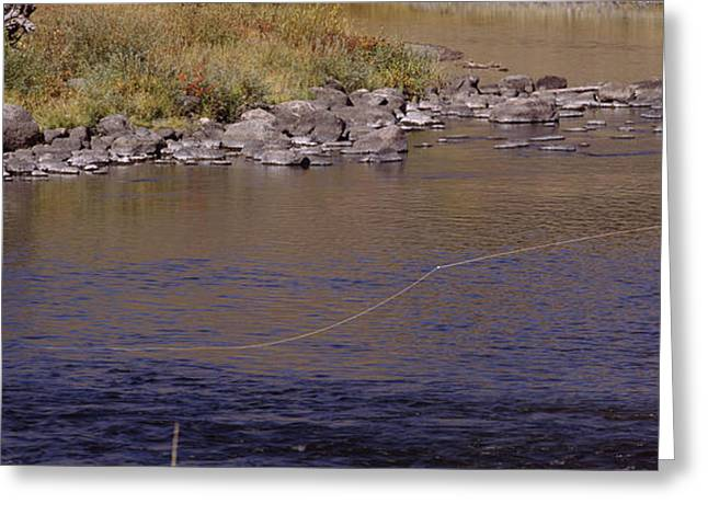 Fishing Creek Greeting Cards - Side Profile Of A Man Fishing, Slough Greeting Card by Panoramic Images