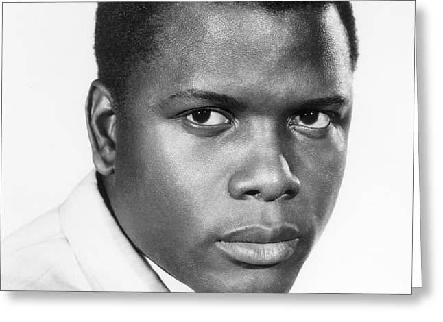 SIDNEY POITIER (1924-) Greeting Card by Granger