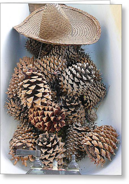 Pine Cones Digital Greeting Cards - Siesta Greeting Card by Ron Regalado