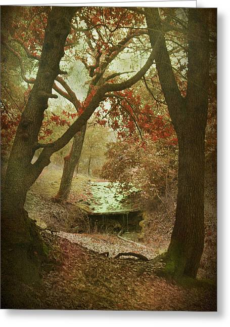 Red Leaves Digital Greeting Cards - Sighs of Love Greeting Card by Laurie Search