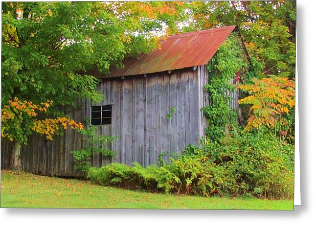 Sheds Greeting Cards - Signs of Autumn Greeting Card by Beverly Canterbury