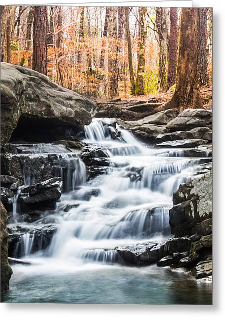 Falling Water Greeting Cards - Signs of Spring at Moss Rock Preserve Greeting Card by Parker Cunningham