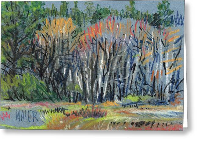 Spring Pastels Greeting Cards - Signs of Spring Greeting Card by Donald Maier