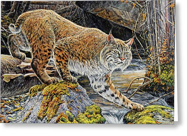 Bobcats Greeting Cards - Silent Caution Greeting Card by Steve Spencer