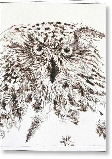 Drypoint Greeting Cards - Silent Observer Greeting Card by Pati Hays