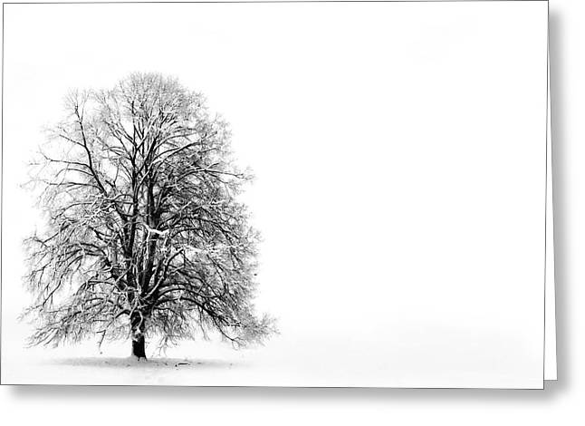 Footsteps Greeting Cards - Silenzio Greeting Card by Photodream Art