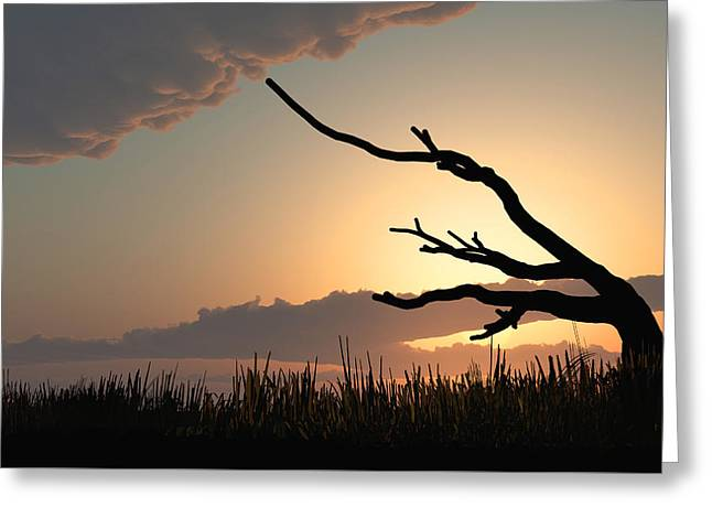 Silhouette Greeting Card by Bob Orsillo