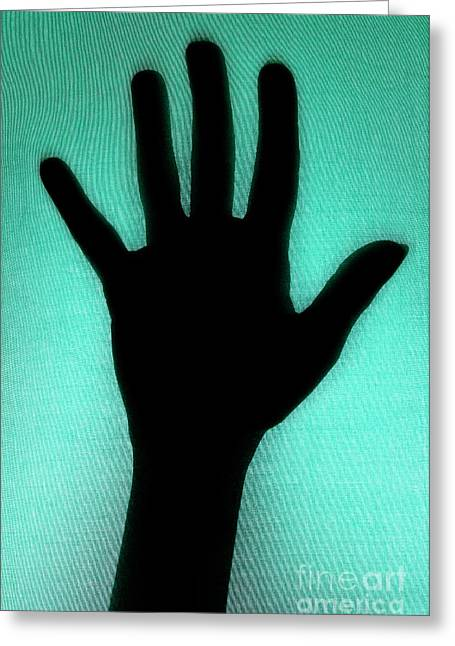 Person Of Color Greeting Cards - Silhouette of hand touching green texture Greeting Card by Sami Sarkis