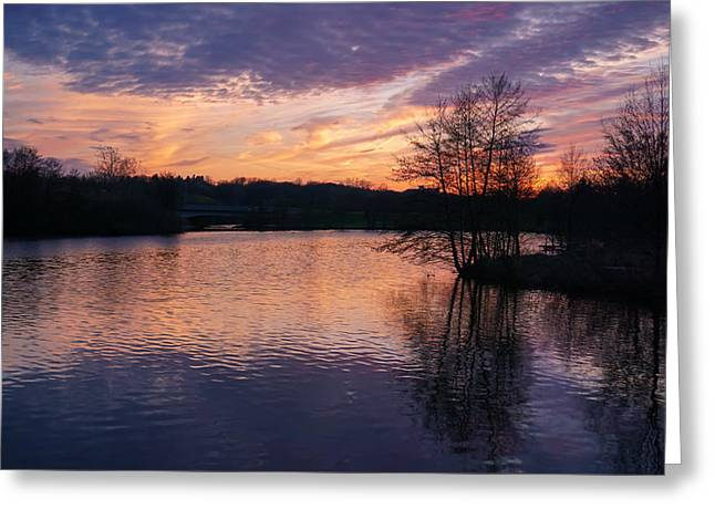 Reflections Of Trees In River Greeting Cards - Silhouette of Spring Sunset Greeting Card by Rachel Cohen