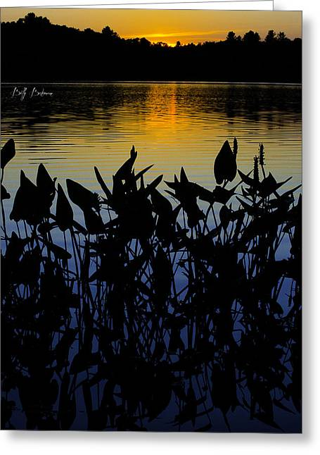 Usa Digital Greeting Cards - Silhouetted Sunset Greeting Card by Billy Bateman