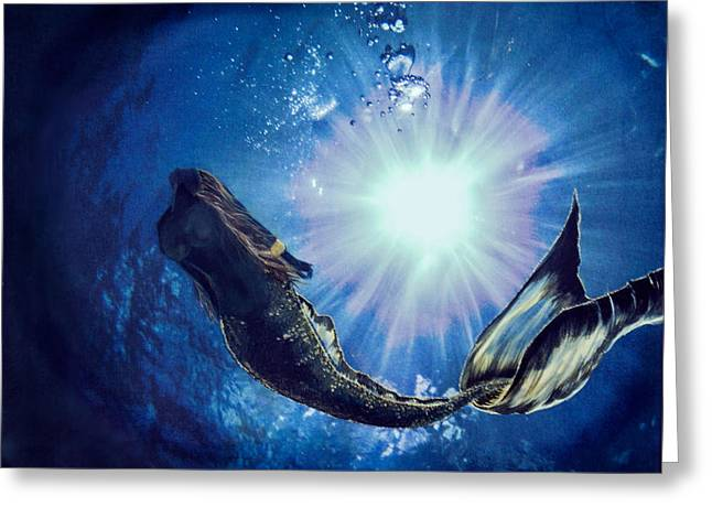Underwater Photos Paintings Greeting Cards - Silhuoette Greeting Card by Jacqueline Tracy
