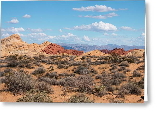 Mountain Valley Greeting Cards - Silica Dome - Valley of Fire Greeting Card by Kristia Adams