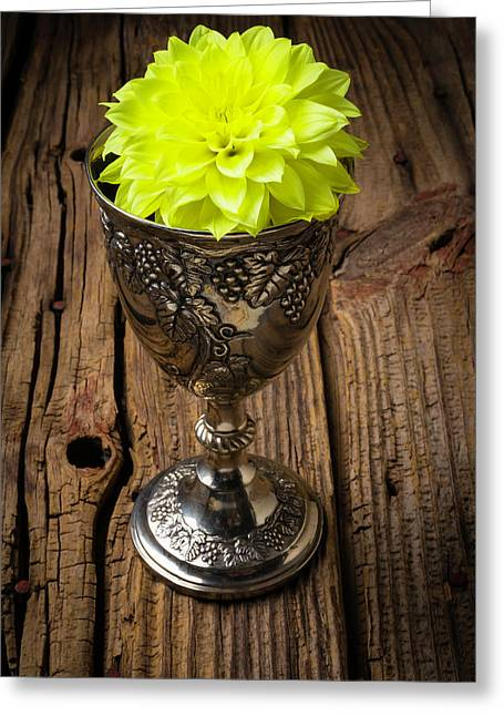 Silver Cup And Dahlia Greeting Card by Garry Gay
