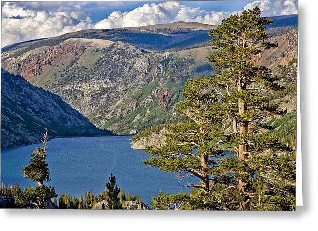 Silver Turquoise Greeting Cards - Silver Lake Pines Greeting Card by Chris Brannen