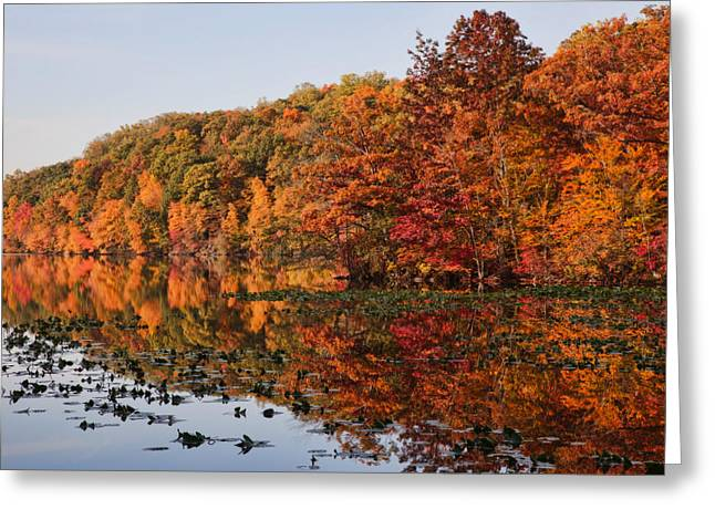 Westchester County Greeting Cards - Silver Lake Reflections Greeting Card by June Marie Sobrito