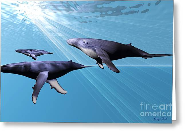 Silver Sea Greeting Card by Corey Ford