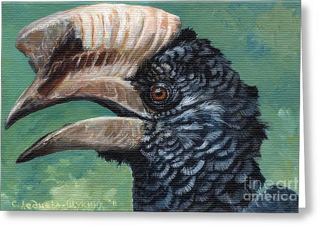 Hornbill Paintings Greeting Cards - Silvery-cheeked hornbill Greeting Card by Svetlana Ledneva-Schukina