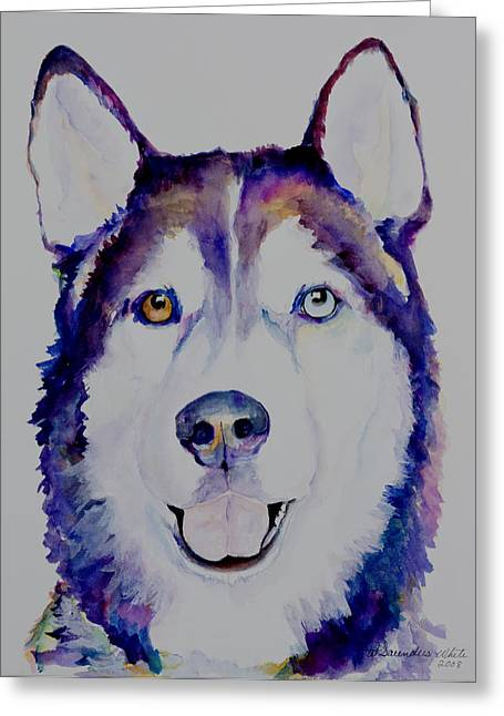 Husky Greeting Cards - Simba Greeting Card by Pat Saunders-White