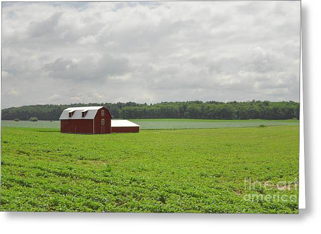 Print Photographs Greeting Cards - Simple Red Barn Field Clouds Greeting Card by Andrea Hazel Ihlefeld