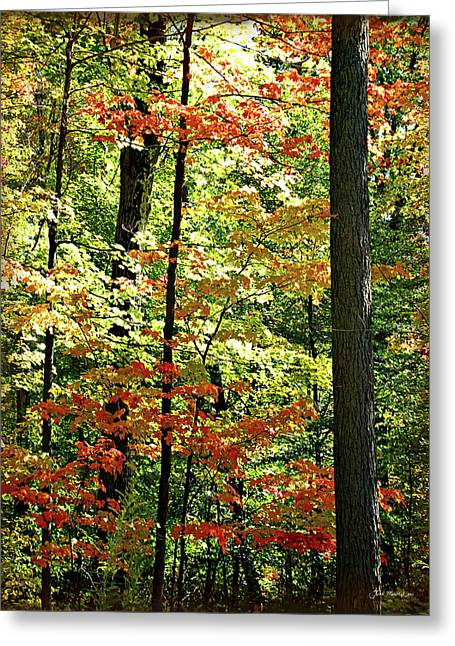 Simply Autumn Greeting Card by Joan  Minchak