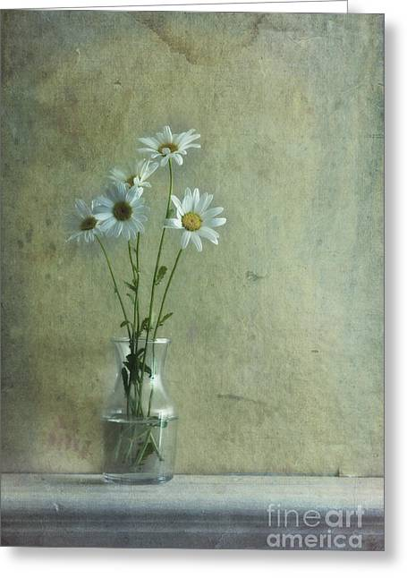 Glass Wall Greeting Cards - Simply Daisies Greeting Card by Priska Wettstein