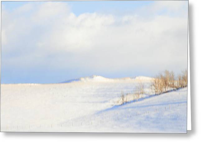 Bare Trees Greeting Cards - Simply Snow Landscape Greeting Card by Theresa Tahara