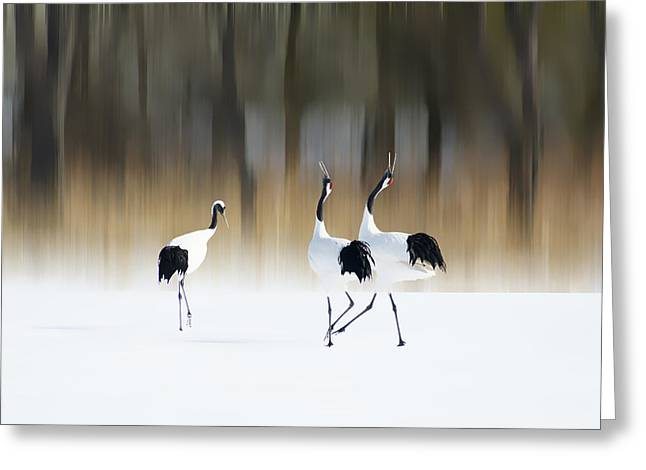 Cranes Greeting Cards - Sing A Song Of Love Greeting Card by Ikuo Iga