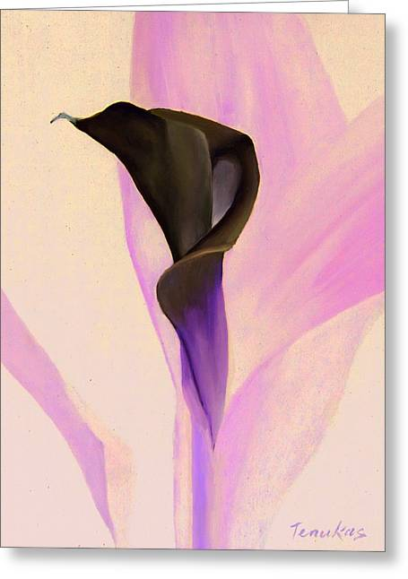 Calla Greeting Cards - Single Calla Lily Greeting Card by Linda Tenukas