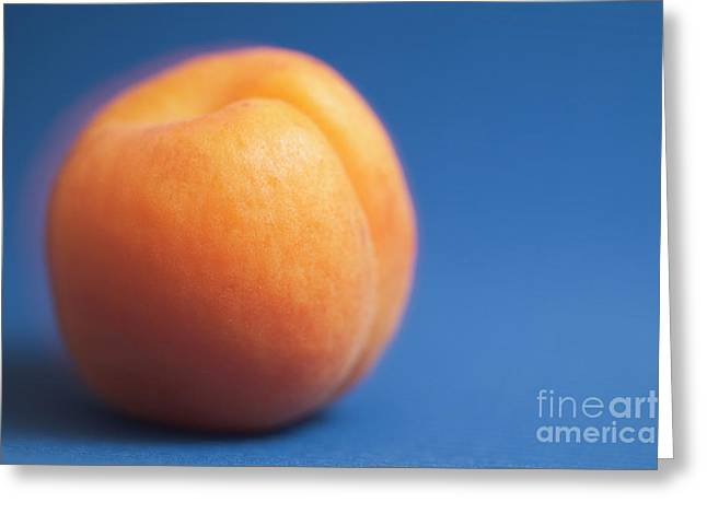 Apricot Greeting Cards - Single ripe apricot ready to eat Greeting Card by Sami Sarkis