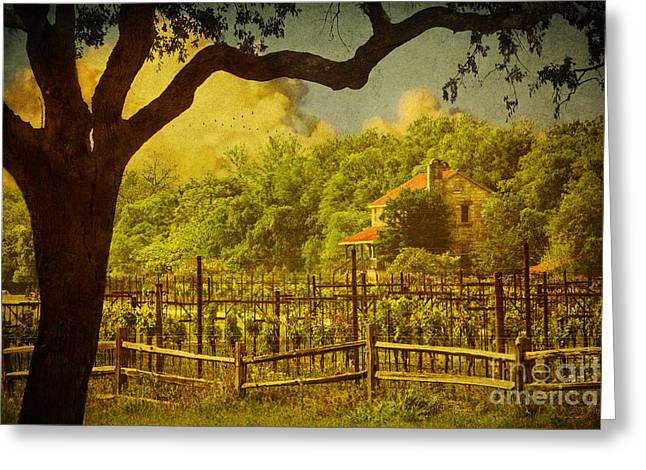 Sister Creek Vineyards Texturized Greeting Card by Priscilla Burgers