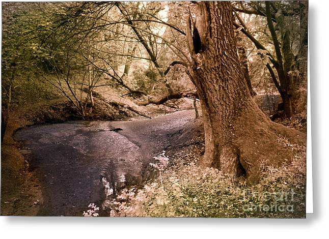 Brook Photographs Greeting Cards - Sit and Dream Awhile Greeting Card by Laura Iverson