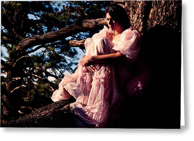 Sitting In A Tree Greeting Card by Scott Sawyer