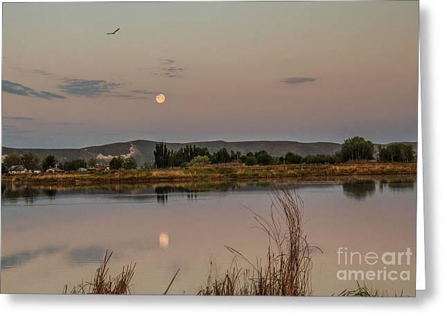 Sitting Moon Greeting Card by Robert Bales